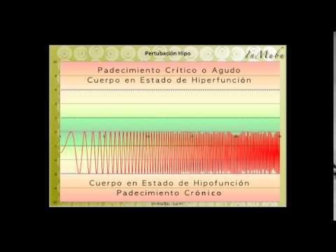 La salud y las perturbaciones energéticas – Terapia Energética – In Mubu