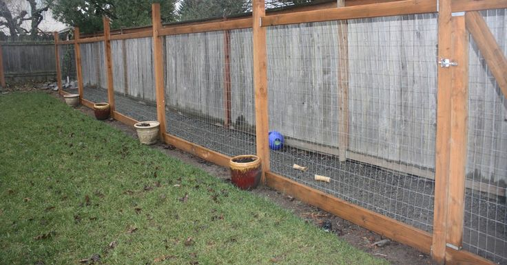 Dog Run Fun Part II (With images) | Backyard dog area, Dog ...