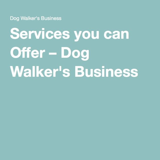 Services you can Offer – Dog Walker's Business