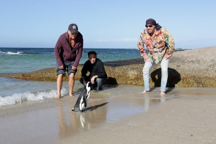 Nothing to see here...just Bruce Springsteen, Nils Lofgren and Steve Van Zandt, staring down a penguin.