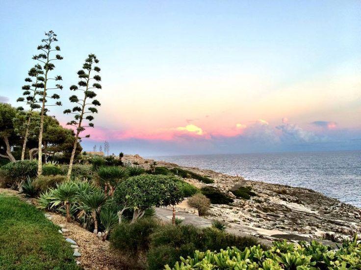 Cala d'Or (Parque Mar) Mallorca. Picture by David Tschan