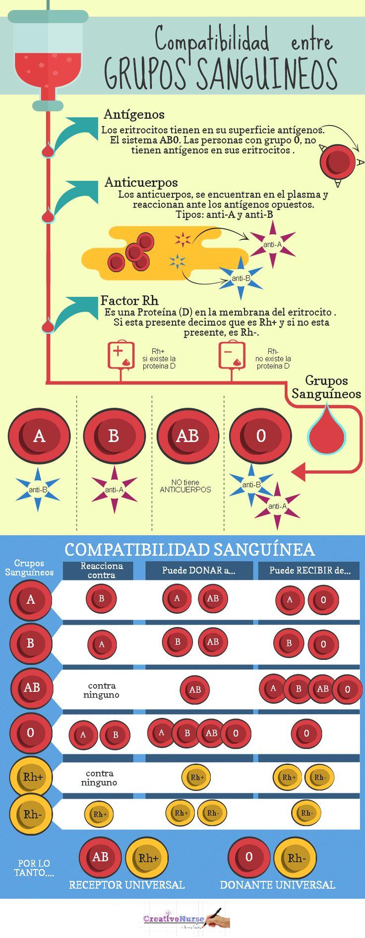 grupos sanguineos para enfermería