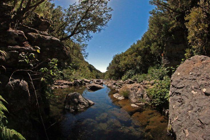 Levada do Alecrim, Ilha da Madeira