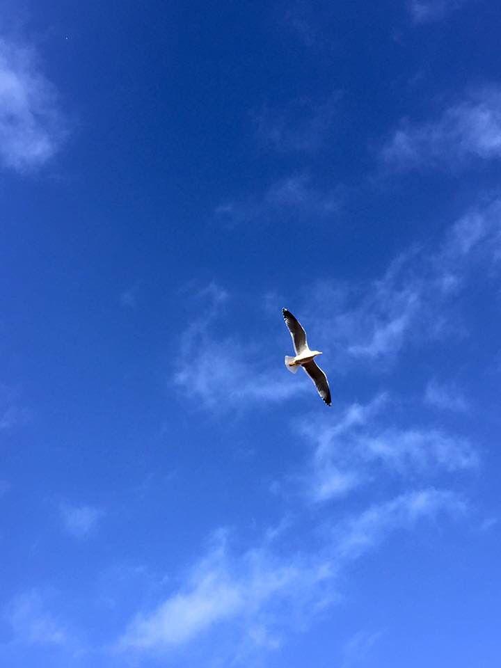 Sous le ciel de #Porto