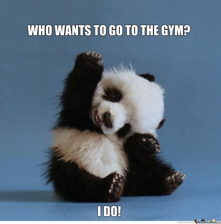 Let's all sweat the stress away with this adorable panda cheering you on!