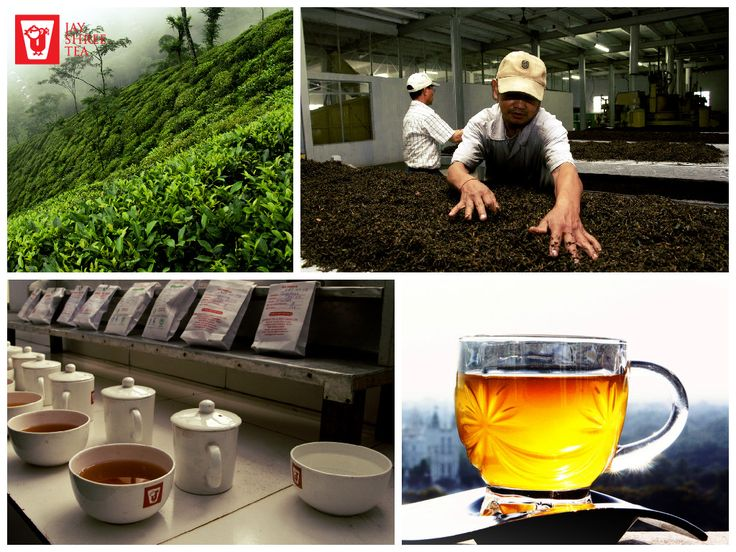 Straight from the dewy lush green valleys of Risheehat, our Darjeeling first flush is carefully selected and crafted to perfection under experienced hands for that faultless blend of aroma and hues to tantalize and satiate your senses.
