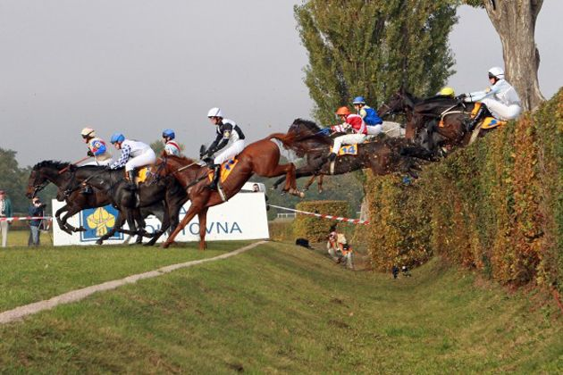 12 of the world's biggest rider frighteners [PICTURES] - Horse & Hound