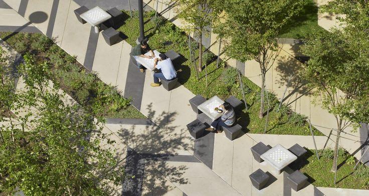 Ландшафтный проект недели — Levinson Plaza, Бостон, США Дизайн площади фокусируется на предоставлении всему Mission Park ландшафта, который передает дух региональных садов Новой Англии. На площади архитектор использует тротуарные материалы, которые способны перенести длинные, сложные зимы и гармонично разработаны в виде елочки, что очень характерно для урбанистических садов. Картина площади «сшивает» пространства для собраний и прогулок вместе. Мощения на площади в пределах сада выводят…
