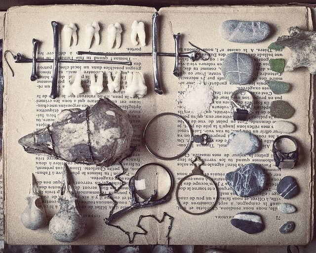 curiosities, stones, skulls, teeth, book, witchcraft