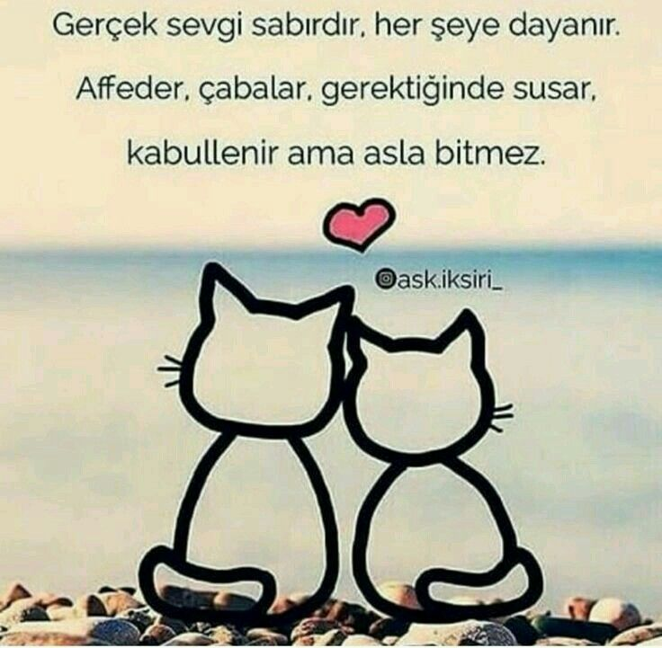 Pin By Alibasi Nejla On Anlamli Sozler Can Yucel Words Love You