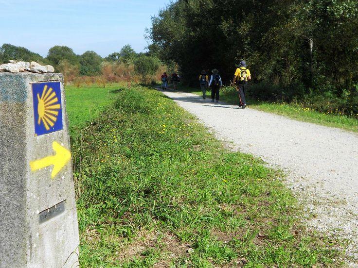 Caminho Português de Santiago - www.caminhoportosantiago.com - a caminho de Caldas de Reis