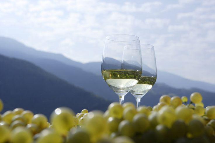 Il progetto Grandi Vigne è un'esperienza unica nel panorama della GDO europea: riunisce agricoltori e produttori di vino eccellenti nelle rispettive aree di produzione e privilegia le aziende agricole di piccole dimensioni.