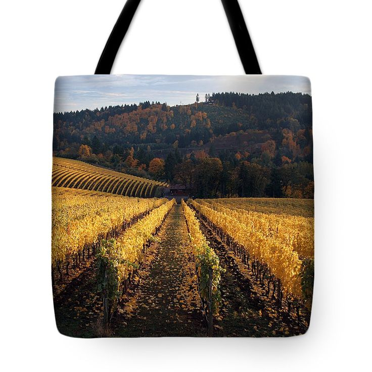 Tote Bag - Tulip Field by VIDA VIDA Mw9eX4AgB