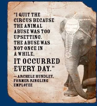 """""""Everyone needs to quit the circus! Enough is enough! Animals deserve better! Animal rights"""""""
