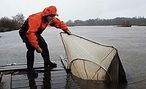 INFO SHEET: Human impacts on the Waikato River