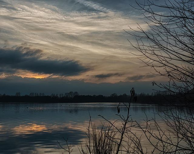 I totaly enjoyed the peace today while the sun goes down  Web: https://d4bk.de . . . #d4bk #landscapephotography #landscape #landschaftsfotografie #landschaft #gooutside #sonyshooter #sunset #water #silhouette #colorful #dramatic #nature #nature_perfection #nature_brilliance #naturephotography #photography #amazing #earth #voerde #nrw #niederrhein #hiking #wanderlust #wanderer #naturelovers #sonyphotography #spiegelung #photographer