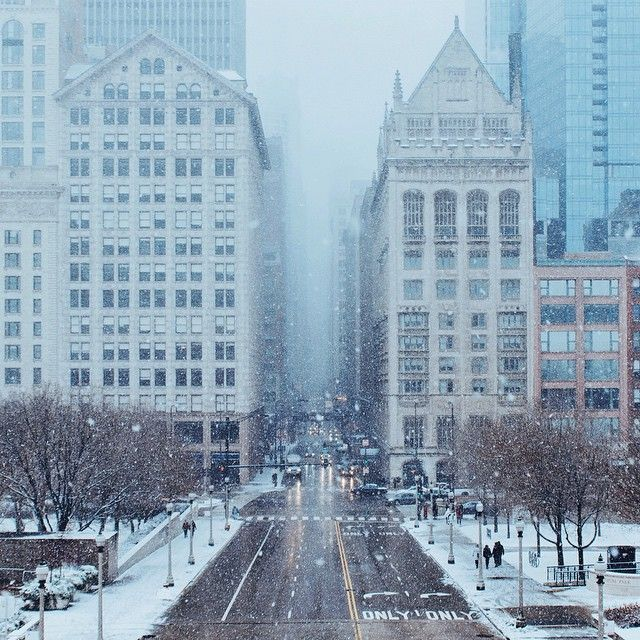 Snowfall in Chicago. Photo courtesy of thedennisli on Instagram.