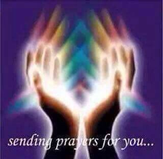 Sending prayers to those mean evil spirited humans- May God show them the light to eternal peace here on Earth