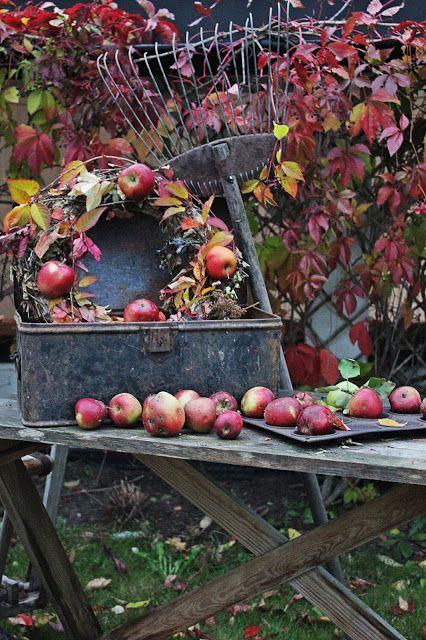 Dere vet det nå..at jeg ELSKER høsten !   For første gang på veldig lenge har jeg lyst   til å bremse denne herlige tiden.   Jeg får r...