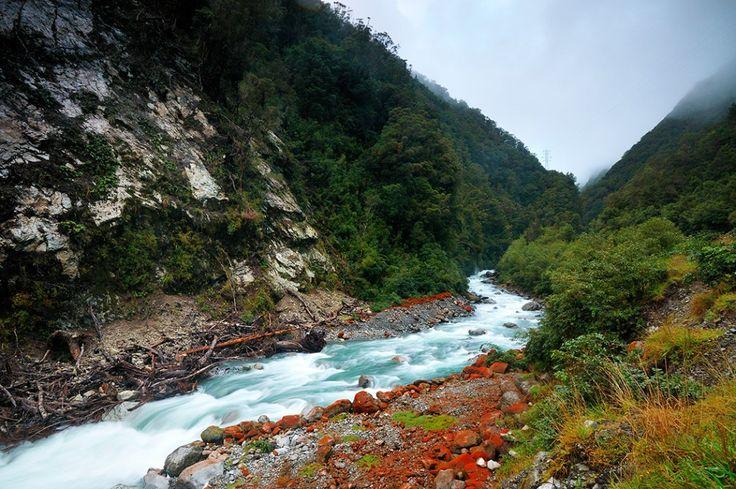 Lišajník na brehoch riek otierať Arthur Pass, Národný park Nový Zéland
