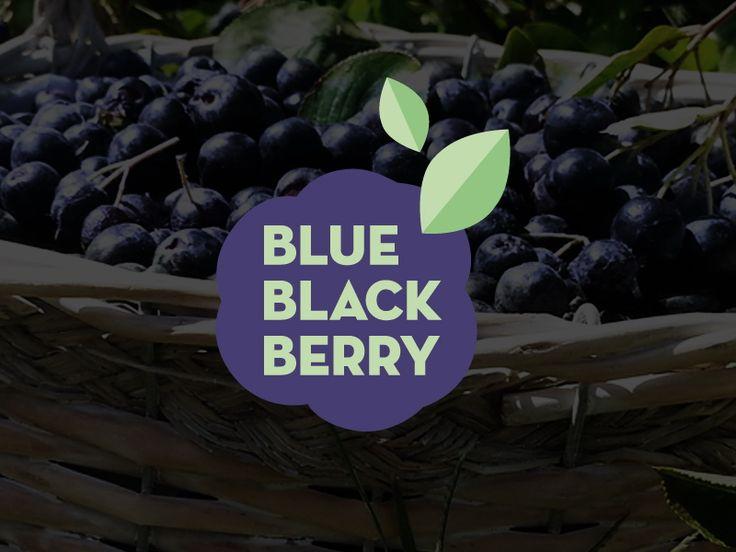 Σχεδιασμός λογοτύπου για την επιχείρηση Blue Black Berry, παραγωγής/εμπορίας καρπών και προϊόντων Αρώνιας και Μύρτιλλου. / Logo design for Blue Black Berry, cultivation and packaging of Aronia and Blueberry fruits and products.
