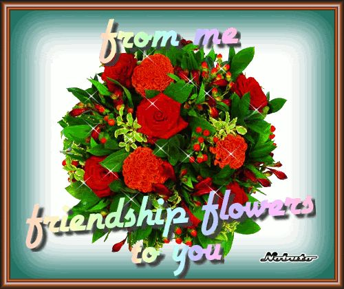 Beautiful Flowers Images With Friendship Quotes: 336 Best Friendships Images On Pinterest