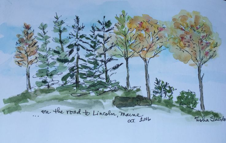 On the road to Lincoln, Maine in October. Pen and Ink and Watercolor by Tisha Sheldon