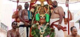 LORD KODANDARAMA ON HIS FAVOURITE HANUMANTHA VAHANAM Lord Kodandarama rode his favourite celestial carrier 'Hanumantha Vahanam' around the temple as part of the annual brahmotsavam