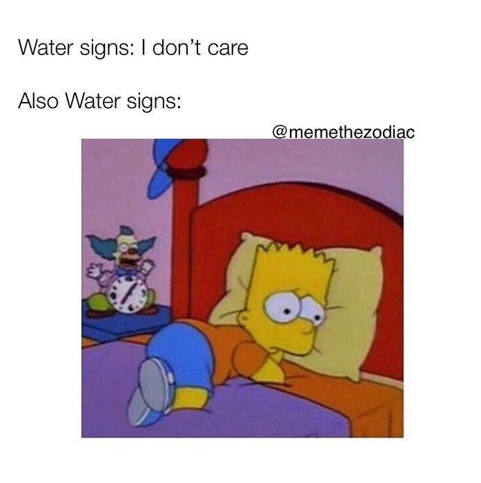 30 Astrology Memes That Are Sooooo You Zodiac Funny Zodiac Signs Pisces Zodiac Signs Astrology