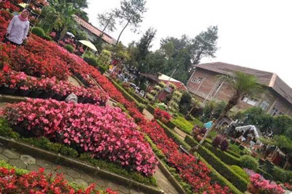 Ciptakan Momen Manis Bareng Pasangan Dengan Mengunjungi 4 Tempat Wisata Romantis Di Bandung Ini Pemandangan Tempat Romantis