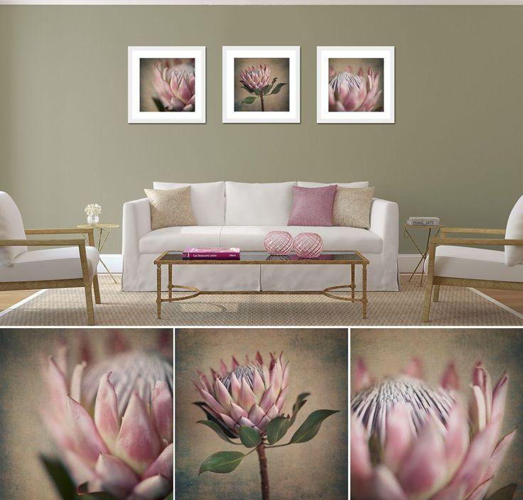 """Square Protea print set"" - 3x 50x50cm prints, white frame. Fine Art Photography as home decor."