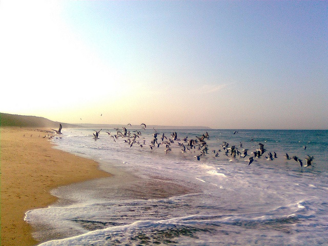 praia da fonte da telha - Portugal