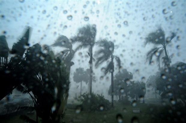 Diterpa Badai Pohon Besar Timpa Gedung Sekolah