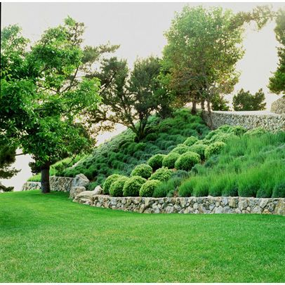 Landscape ideas for a slope images for Hillside landscaping