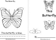 Butterfly colors book