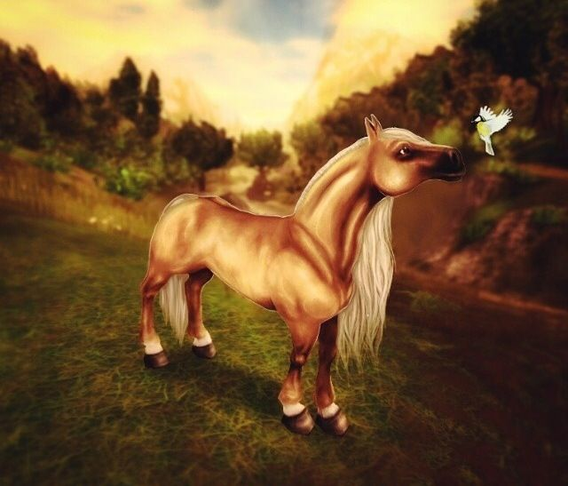 Just A Art Of Star Stable Star Stable Pinterest