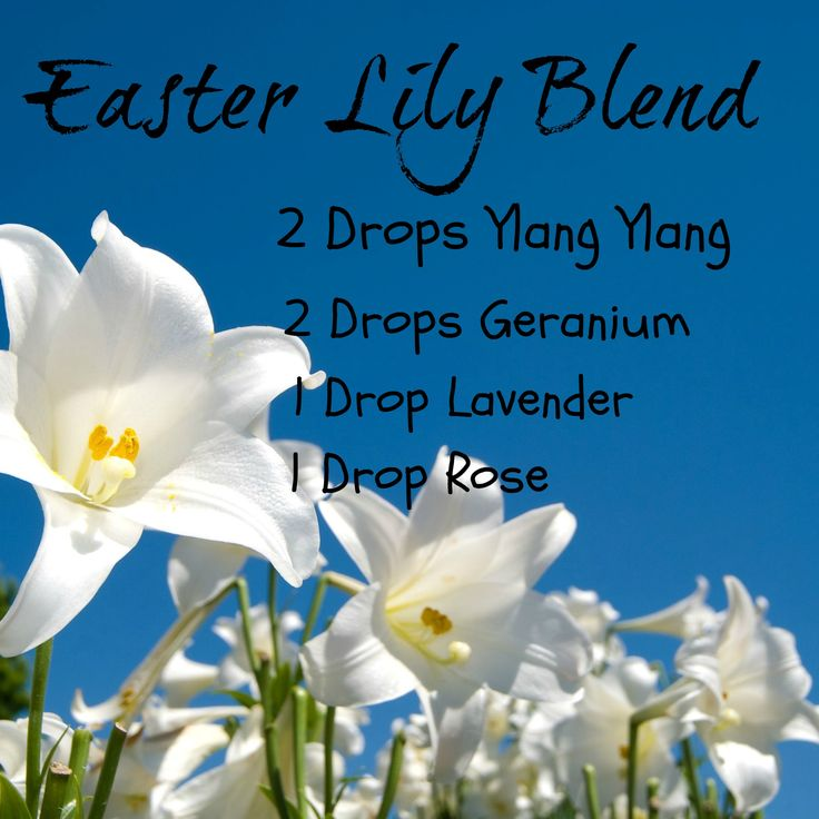 Easter Lily Diffuser Blend Spring Ylang Ylang, geranium, lavender and rose essential oils recipe.