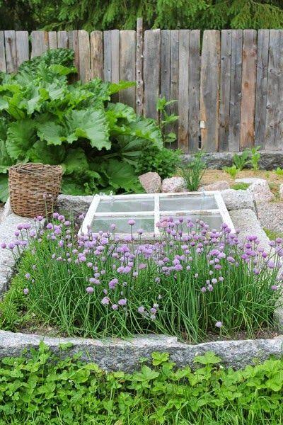 Odlingsbädd av granit. Foto: Erika Åberg