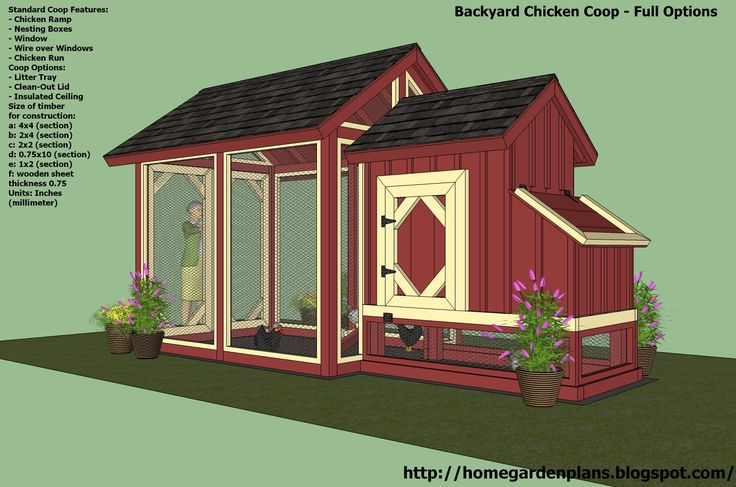 The 25 best walk in chicken coop ideas on pinterest hen for Small backyard chicken coop plans free
