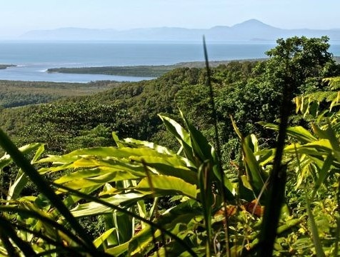 Lookout from the top of Noah's Range, Daintree Rainforest - it's a must see when driving through the world's oldest living rainforest