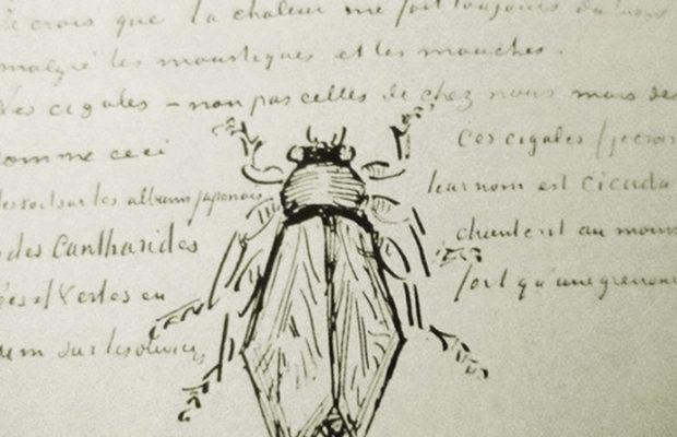 Sorun Ruhu mu Giyisileri mi Seçtiğin / Van Gogh
