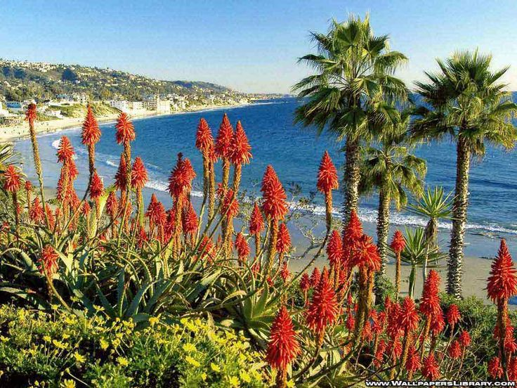 http://www.wallpaperslibrary.com/Wallpapers/Nature/california-beach-wallpaper.jpg