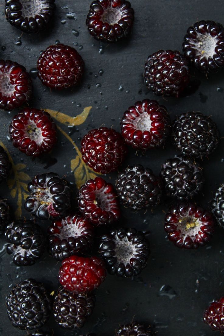 """vmburkhardt:  """"The blacker the berry the sweeter the juice."""" – Proverb 