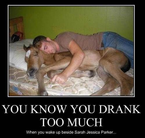 Funny alcohol memes pictures You Know You Drank Too Much When You Wake Up Beside Sarah Jessica Parker :-)