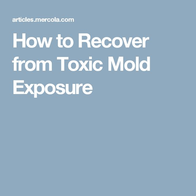 How to Recover from Toxic Mold Exposure