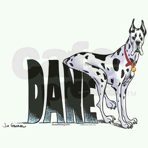 That's a Dane for ya