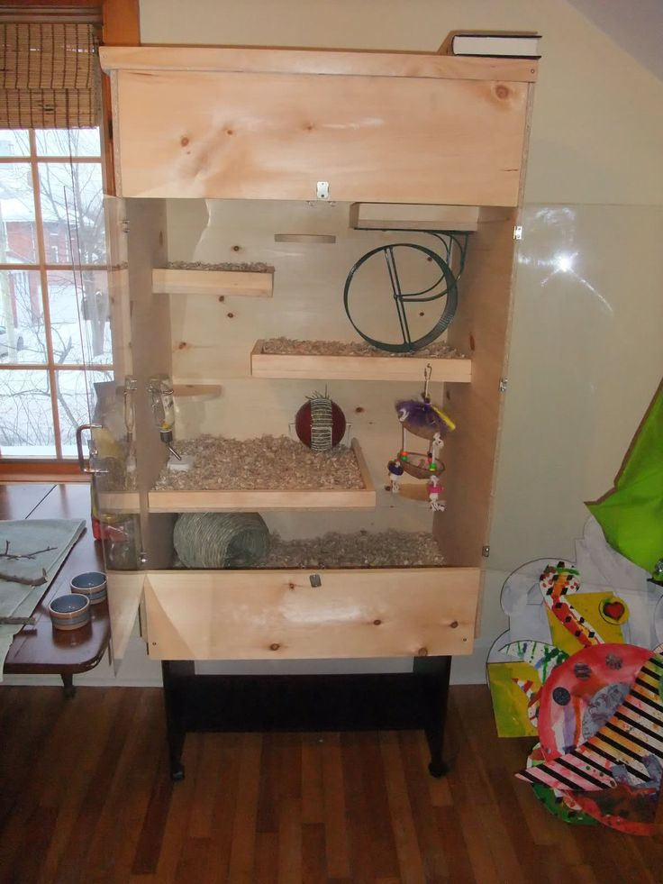degu cages | HOW TO BUILD A DEGU CAGE !