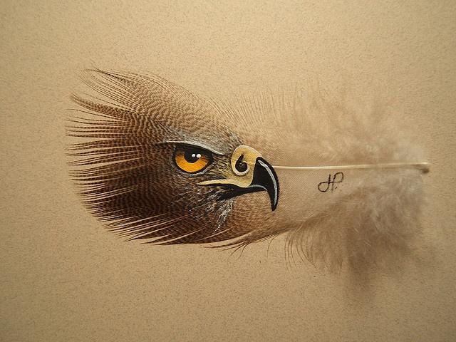 goshawk painted on a feather by Jason Telasco... rather amazing