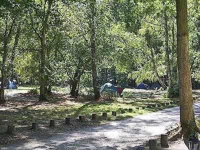 eenvoudige camping in het prachtige bos van Fontainebleau