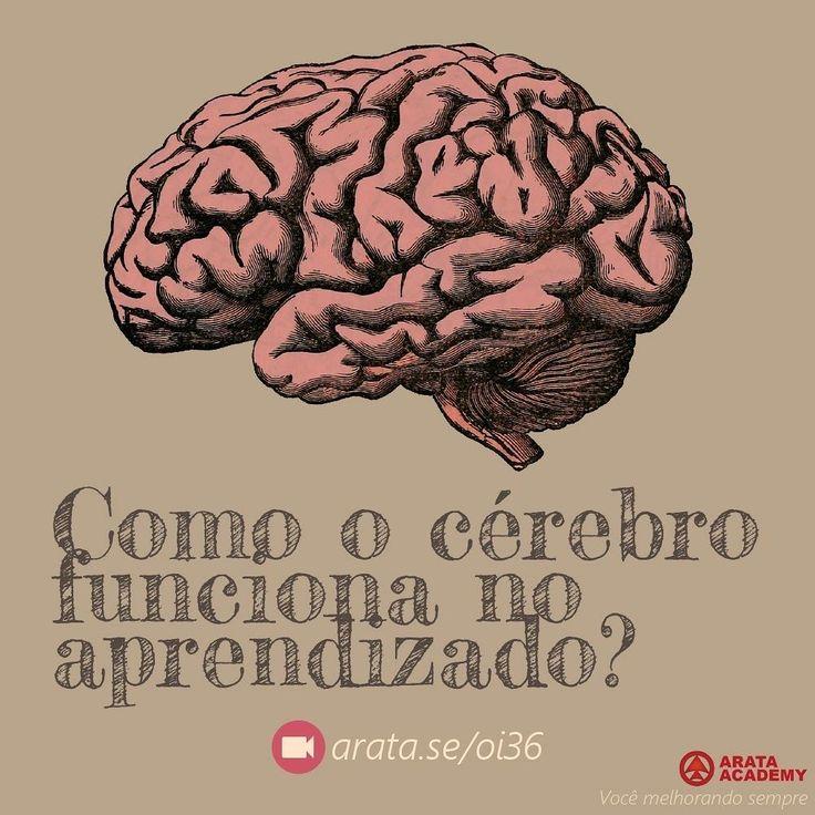 http://arata.se/oi36  Como o cérebro funciona no aprendizado? __________________________________________________________________________ #ArataAcademy #ArataAcademyPORTUGUESE #AutoDesenvolvimento #Domínio #edtech #elearning #instadaily #PhotoOfTheDay #PicOfTheDay #Produtividade #SeiitiArata #cérebro #vida #portugues
